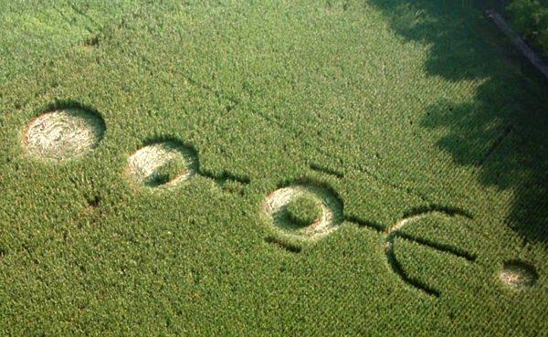 signs-crop-circle